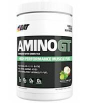 Amino GT de Gat 300 gramos