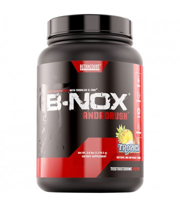 Bullnox Androrush 65 servicios de Betancourt