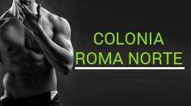 Colonia Roma Norte
