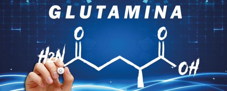 Glutamina ¿Para qué sirve?