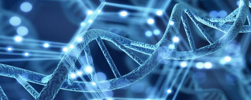 Genética ¿Realmente Importa?